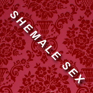 Hentai X Shemales – good job!